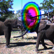 Automatic Analysis of Elephant Vocalizations