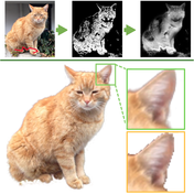 Spatio-temporally Coherent Interactive Video Object Segmentation via Efficient Filtering